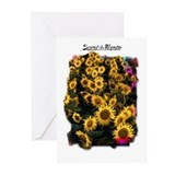 Scent-A-Ments  Greeting Cards (Pk of 10)