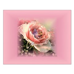 Baby Pink Rose Posters