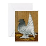 Indian Fantail Pigeon Greeting Cards (Pk of 20)