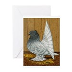 Indian Fantail Pigeon Greeting Card