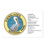 Everglades NP (Pelican) Postcards (Package of 8)
