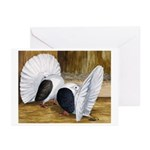 Saddle Fantails Greeting Cards (Pk of 20)