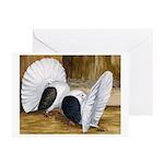 Saddle Fantails Greeting Cards (Pk of 10)