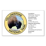 Yellowstone NP (Bison) Rectangle Decal