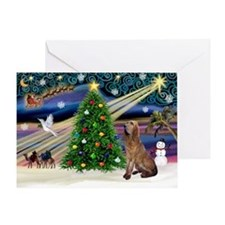 Xmas Magic & Bloodhound Greeting Card