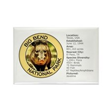Big Bend NP (Javelina) Rectangle Magnet
