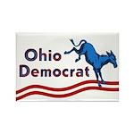Ohio Democrat Magnet
