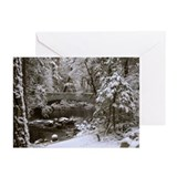 Funny Yosemite valley Greeting Cards (Pk of 10)