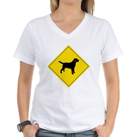 Boarding Lab Women's V-Neck T-Shirt