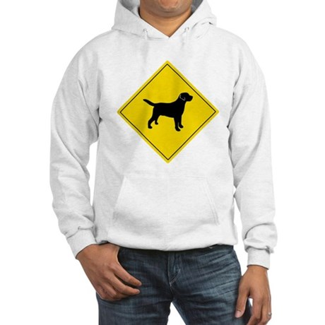 Boarding Lab Hooded Sweatshirt