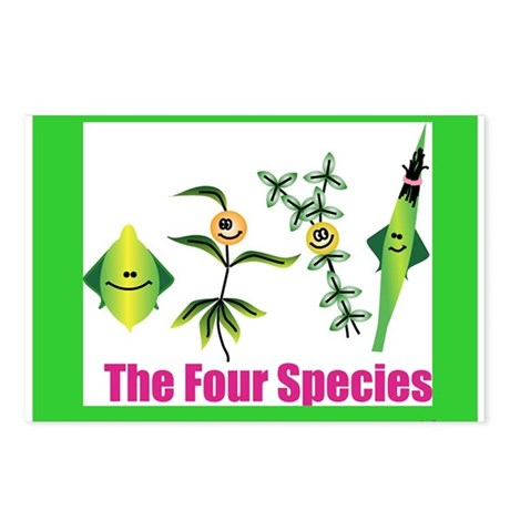 The Four Species Sukkot Postcards (Package of 8)