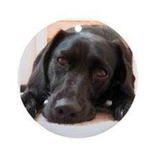 Labrador Retriever Dog Ornament (Round)