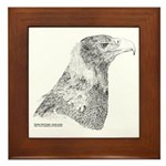 Wedge Tailed Eagle Fine Framed Tile