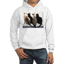 Bird Watching With Cat Friends Hoodie