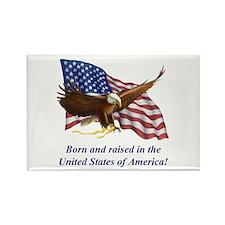 Born Raised In USA! Eagle Rectangle Magnet (100 pa