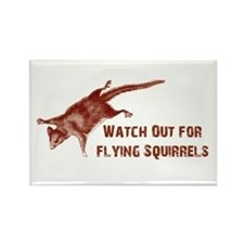 Unique Flying squirrel Rectangle Magnet