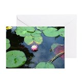 Lotus Greeting Cards (Pk of 20)