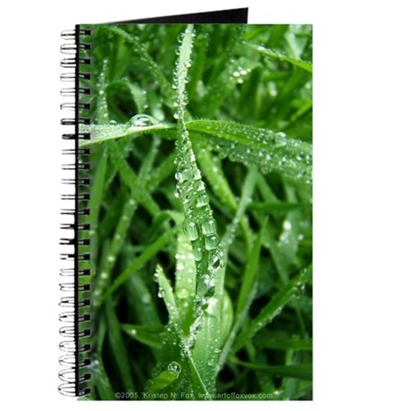 Raindrops Journal