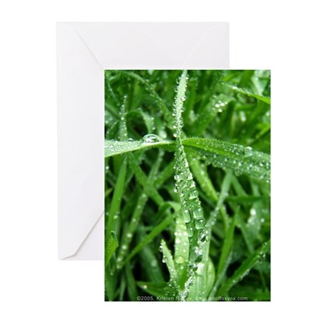 Raindrops Greeting Cards (Pk of 10)
