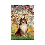 Spring / Sheltie (#1) Rectangle Magnet (10 pack)