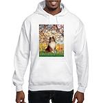 Spring / Sheltie (#1) Hooded Sweatshirt