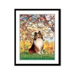 Spring / Sheltie (#1) Framed Panel Print