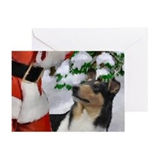 Smooth Collie Christmas Greeting Card