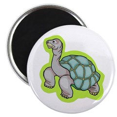 "Little Turtle 2.25"" Magnet (10 pack)"