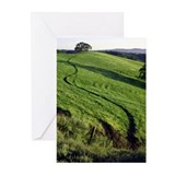 MOUNT DIABLO FOOTHILLS - Greeting Cards (Pk of 10)