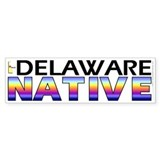 Delaware native (bumper sticker 10x3)