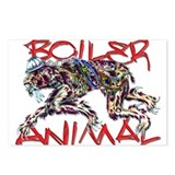 boiler animal Postcards (Package of 8)