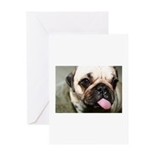 Cute Dog cooling Greeting Card