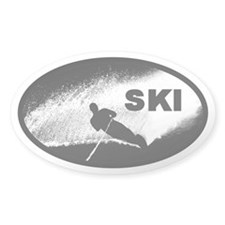 Water Ski Oval Decal