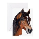Arabian Greeting Cards (Pk of 10)