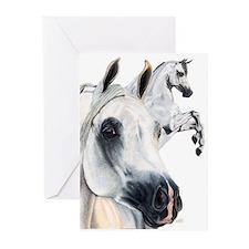 Grey Arabian Greeting Cards (Pk of 10)
