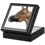 Arabian Horse Keepsake Box