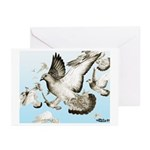 Flying Homer Pigeons Greeting Cards (Pk of 10)