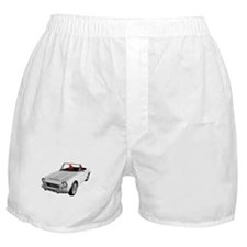 Cute Roadsters Boxer Shorts