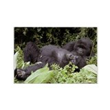 caring gorillas Rectangle Magnet