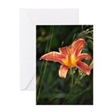 Tiger Lily Custom Greeting Card