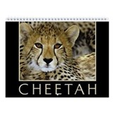 Cheetah Wall Calendars