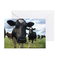 Heres Lookin At You Babe! Greeting Cards (Pk of 20