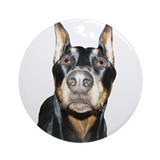 Dobie Nose Ornament (Round)