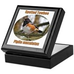 Spotted Towhee Keepsake Box
