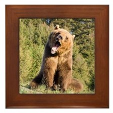 Grizzly Bear Framed Tile