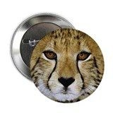 "Cheetah Face 2.25"" Button (10 pack)"