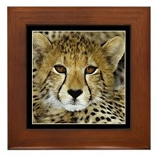 Cheetah Face Framed Tile