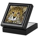 Cheetah Face Keepsake Box
