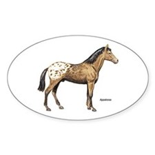 Appaloosa Horse Oval Decal