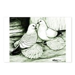 Ice Pigeons Postcards (Package of 8)
